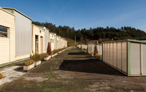 Industria-poligonoa, Okamika